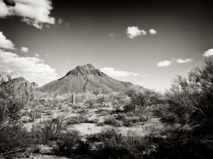 BW Old Tucson AZ 009 017