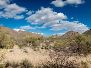 Tucson AZ scenic 009 016