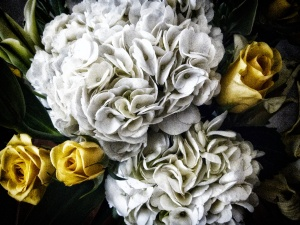 Floral w filter  4324